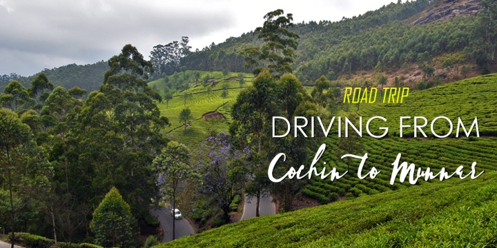 Driving from Cochin to Munnar in a Day